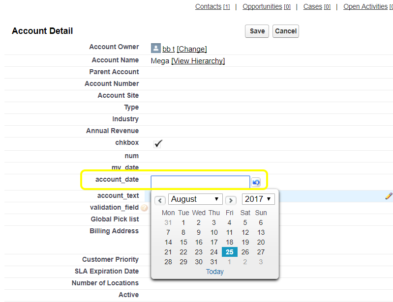 Mapping the Salesforce Date field to your form field on training mapping, informatica mapping, twitter mapping,